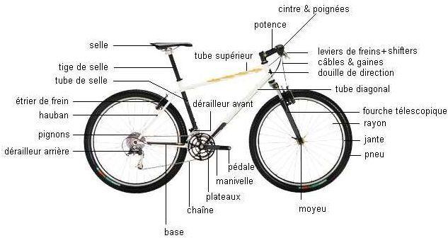 vélo hauteur de selle